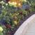 Hatfield Lawn & Landscape