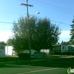 Periwinkle Mobile Park