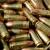 Trojan Arms & Gunsmithing