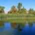 Floyd Lamb State Park