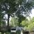 Ron Raby Tree Service