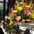 Rankin Garden And Atrium
