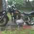 Harley Davidson Sales