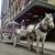 Elite Carriages of Kansas City