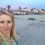 Hotel del Coronado - Coronado, CA. Lots of beach access from hotel.