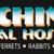 Kachina Animal Hospital