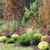 Maple Ridge Landscaping Inc.