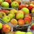 Blue Jay Orchards - Pumpkin Patch