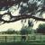Around the Bend Equestrian Center