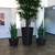 Pacific Plantscapes Inc.