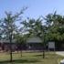 Woodbridge Children's Center At Morello Park