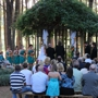Chapel In The Pines