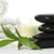 natUreal Wellness Spa