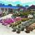 Prianti Farms, Inc