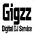 Gigzz Digital DJ Service