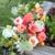 The Little Flower Shoppe