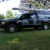 Ryan Pest & Wildlife Control Services, Inc.