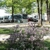 Carson's Country Court RV and Mobile Home Park