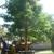 ADI Landscaping