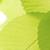 Weems Tree & Landscape Service