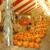 The Pumpkin Factory - Christmas Trees
