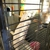 Chaar Saddlery Farm & Pet