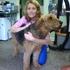 Kellie's Pet Salon Grooming, Boarding & Rescue