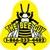 Bee Guy The