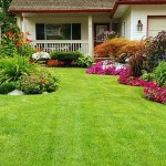 570-380-iStock_000013964719Small_normal_green_yard