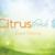 CitrusFresh Carpet Cleaning