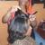 Black Trendz By Tammy Black Hair Salon