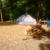 Bodnarosa Motel & Campgrounds