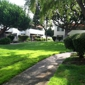 Northgate Plaza Apartments - Fremont, CA. Grass area. Great place to play ball.