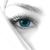 Eyebrow Masters