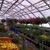 Deb & Alice's Hosta Hut & Greenhouse