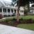 Charleston Evergreen