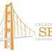 California SEO Professionals