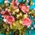 Bloomfield Florist