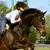 Saxton Equestrian