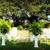 Birdsong Farms Wedding Cottage