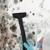 BioRestore Asbestos and Mold Removal Company