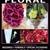 Jocelyn's Floral & Wedding Ctr