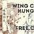 Wing Chun Michigan
