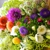 America's Florist/USAsend
