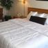 Best Western Plus Midvale Inn
