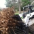 Steve's Tree Service, Landscape, Hauling, & Excavating