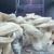 Thacker's Gourmet Mushrooms