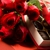 Touch of Roses - Visalia Florist