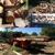 Lybeck's Firewood, Logging & Tree Service