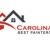 Carolina's Best Painters